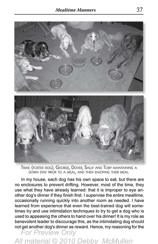 "Image of page 37 from the book ""How Many Dogs?!"", text reprinted below"
